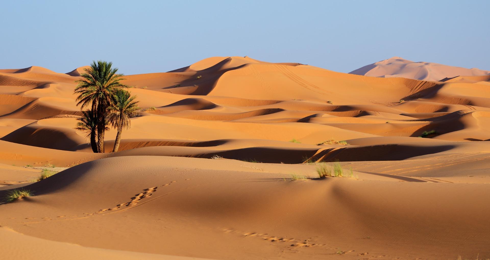 Sahara 8 días